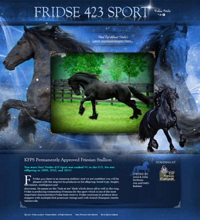 Fridse 423 Sport - KFPS Permanently Approved Friesian Stallion