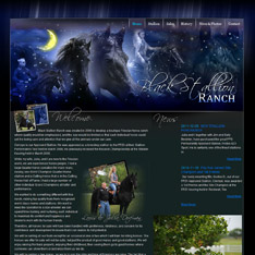Black Stallion Ranch